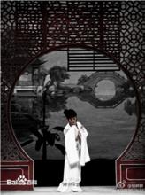 传统文化纸中国戏剧——越剧红楼梦